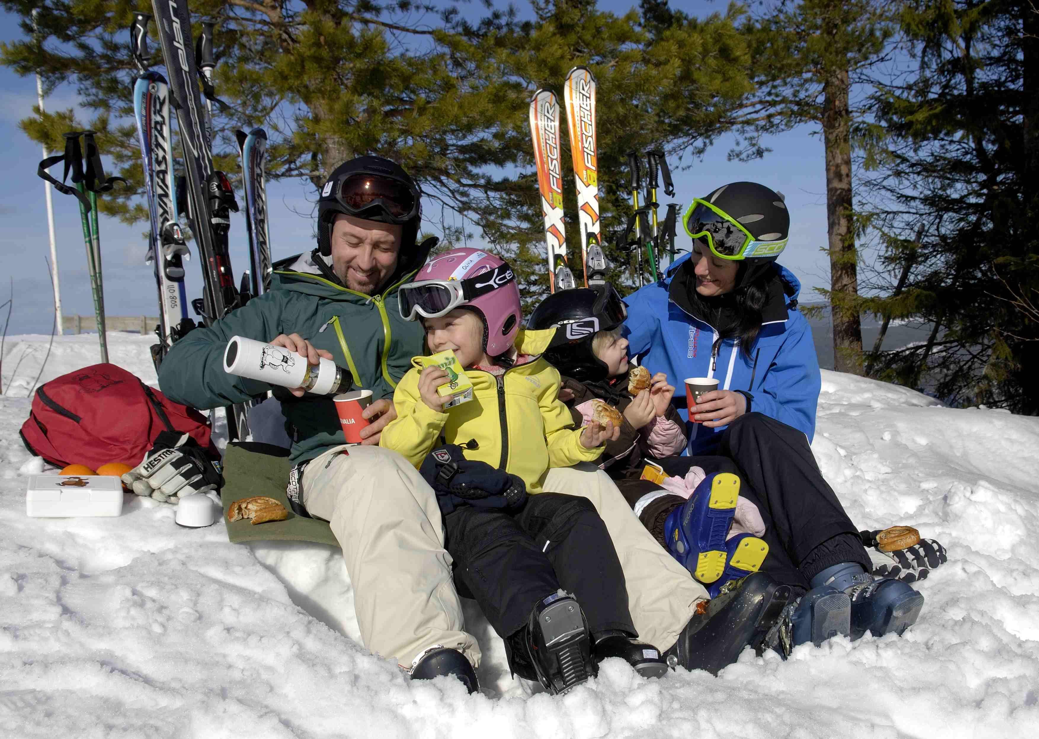 Hassela Ski Resort stugor