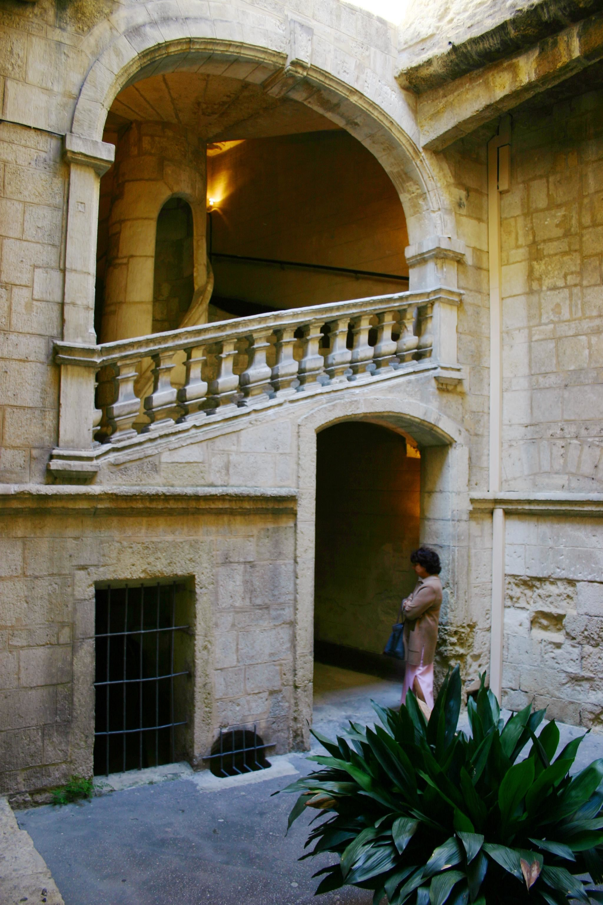 "Visite en anglais de Montpellier : ""Wine Tasting in the historical center"""
