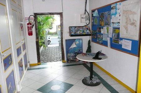 Plongée - B'leu océan