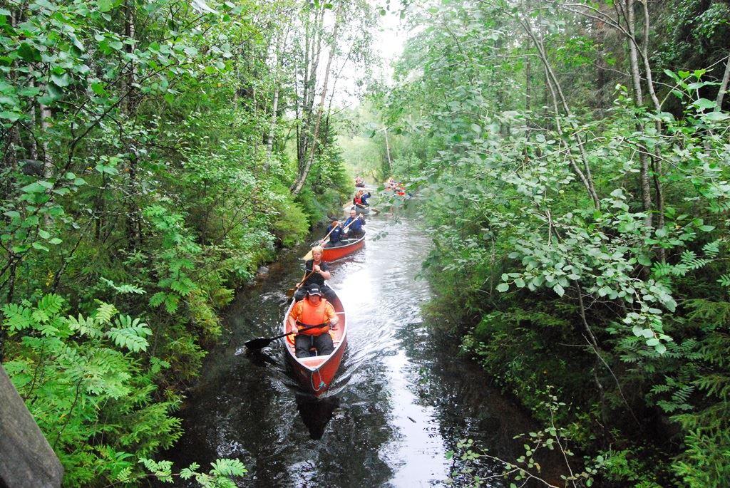 Paddla kanot i Sävarån
