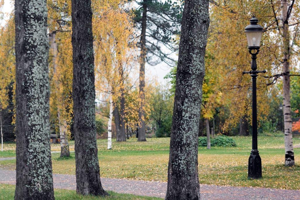 Parks in Umeå