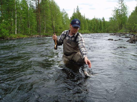 Fiska i Vindelälven