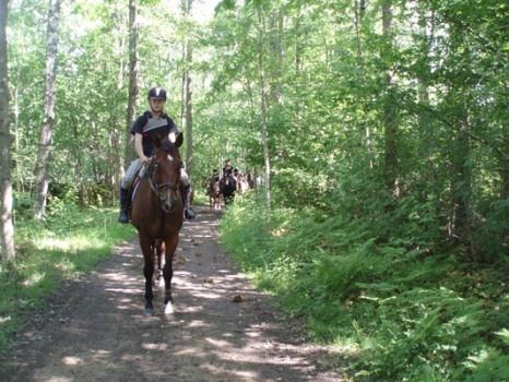 Häst och Spa på Tingsryd Resort