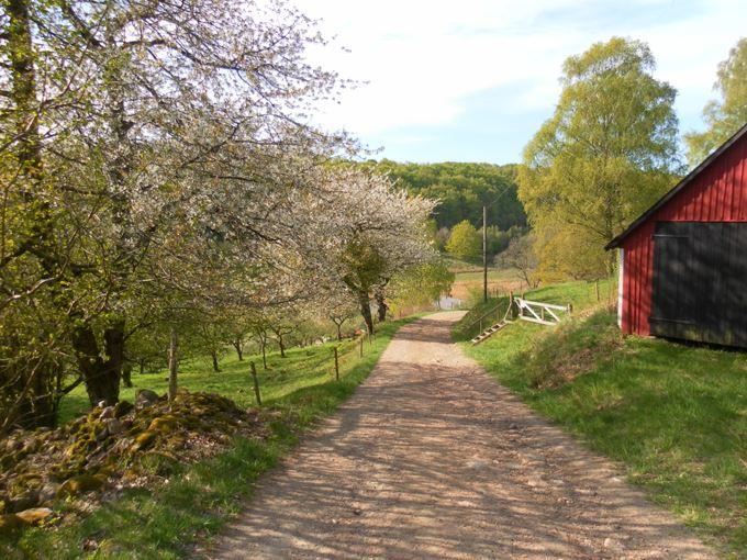 Boende-Båstad (Ylva Hultberg)