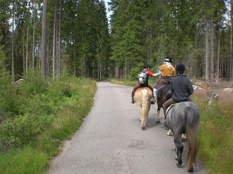 Turridning hos Pony Ranch