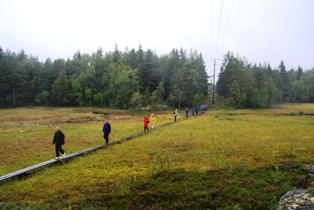 Gör en aktivitet i Holmsund