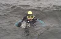 Diving in Söderhamn