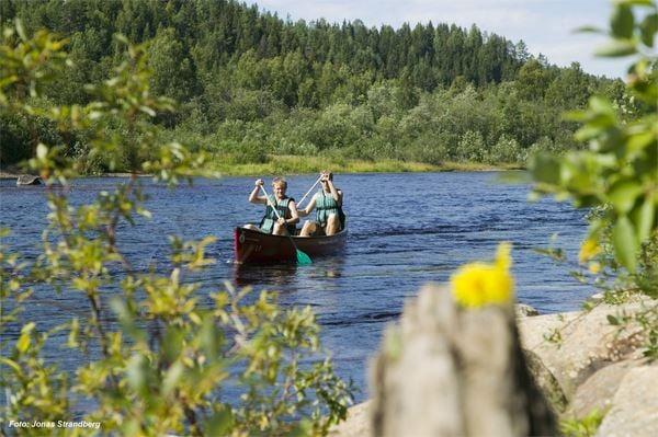 Rogivande paddling längs Öreälven
