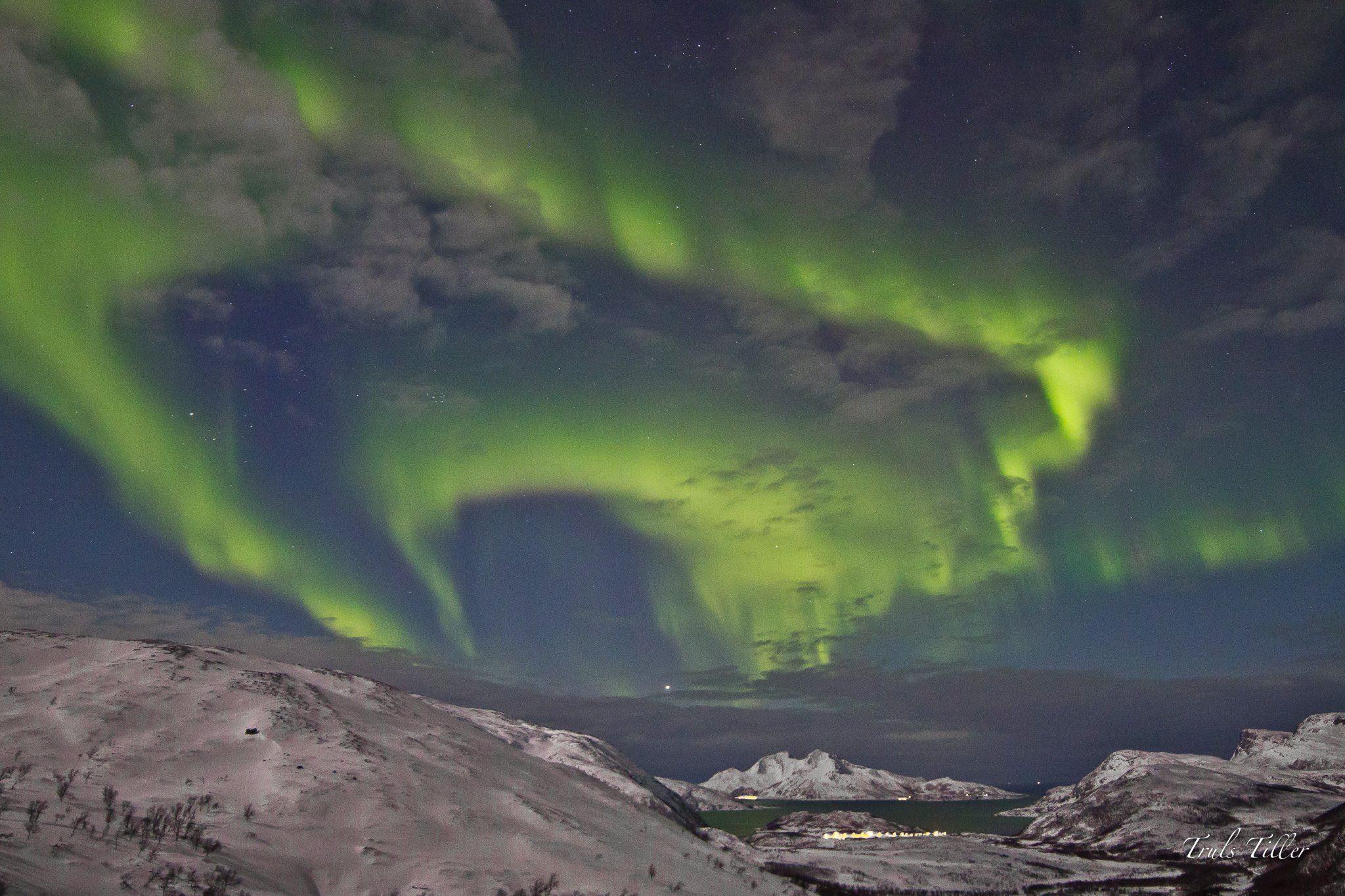 En natt med aktiv aurora hundeslede - Active Tromsø