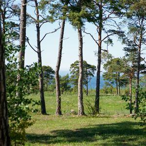 Gotlands IdrottsCenters Wandererheim
