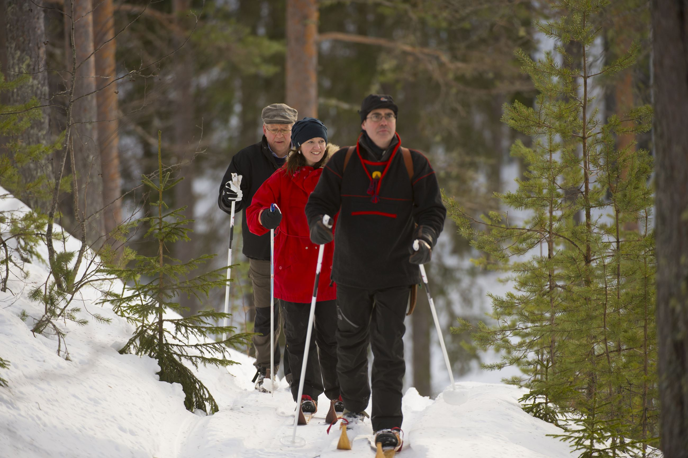 Guided ski trip through the troll forest