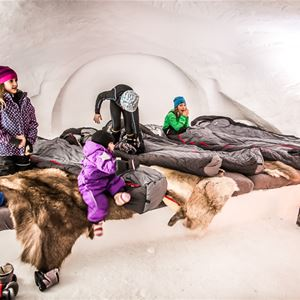 Bo i igloo på Åreskutan