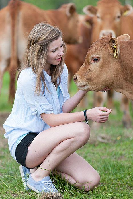 © Åbrånets Limousin, Åbrånets Limousin