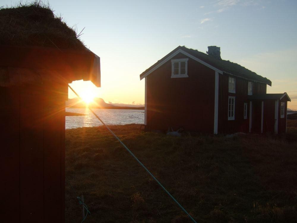 Boattrips to Emårsøy / Vega