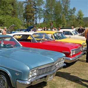 Media Lupus, Sollefteå Big Meet Cruising, Stadsparken