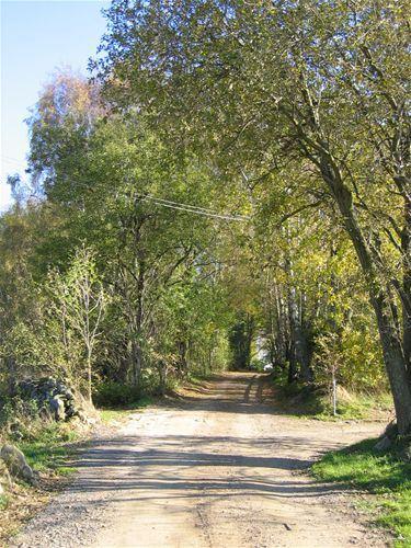 Boende - Båstad (Barbro Nidelius)