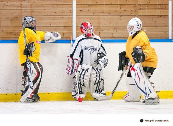 Niklas Sundströms Hockeyskola