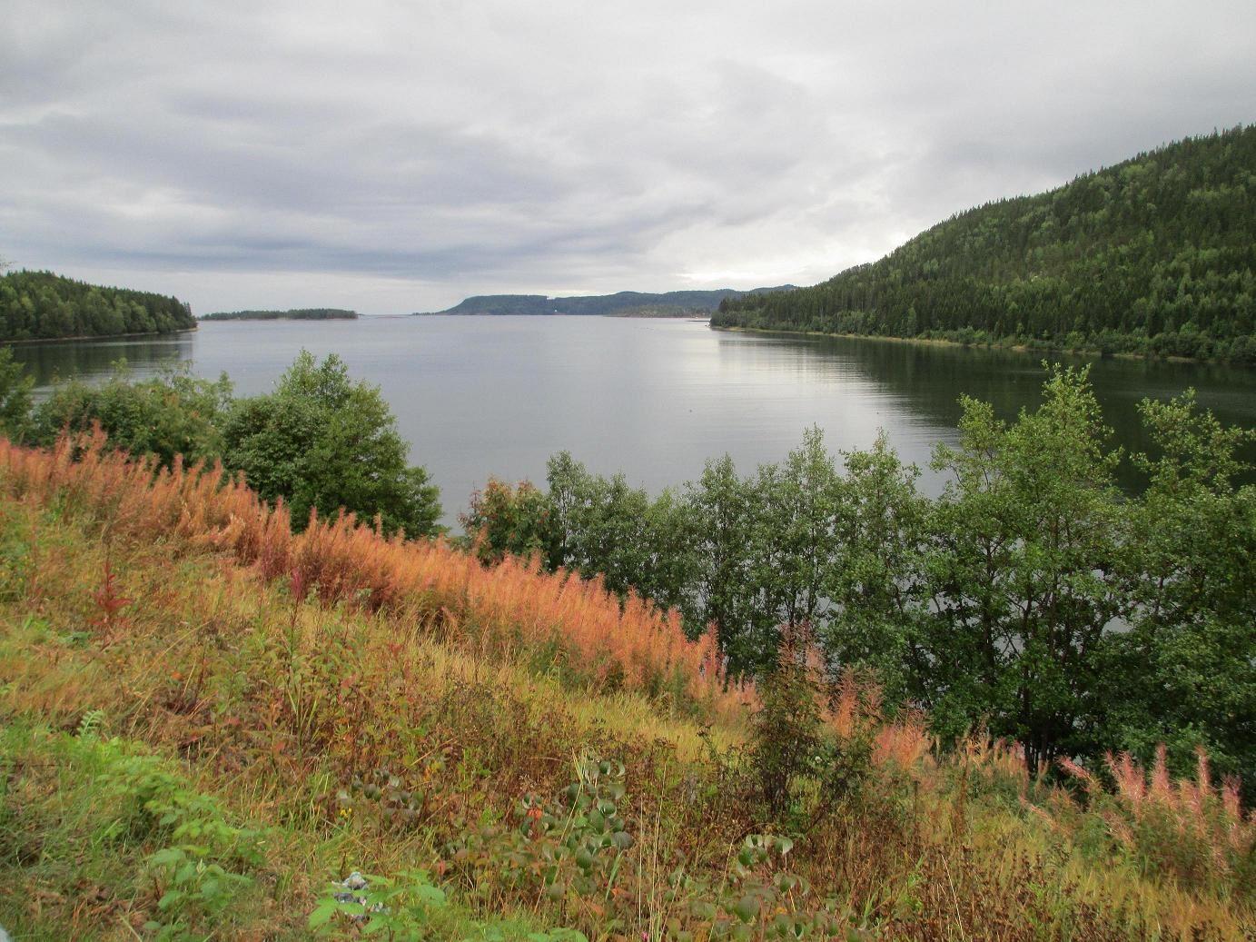 foto: Lisa Reil, Utsikt över Omnefjärden