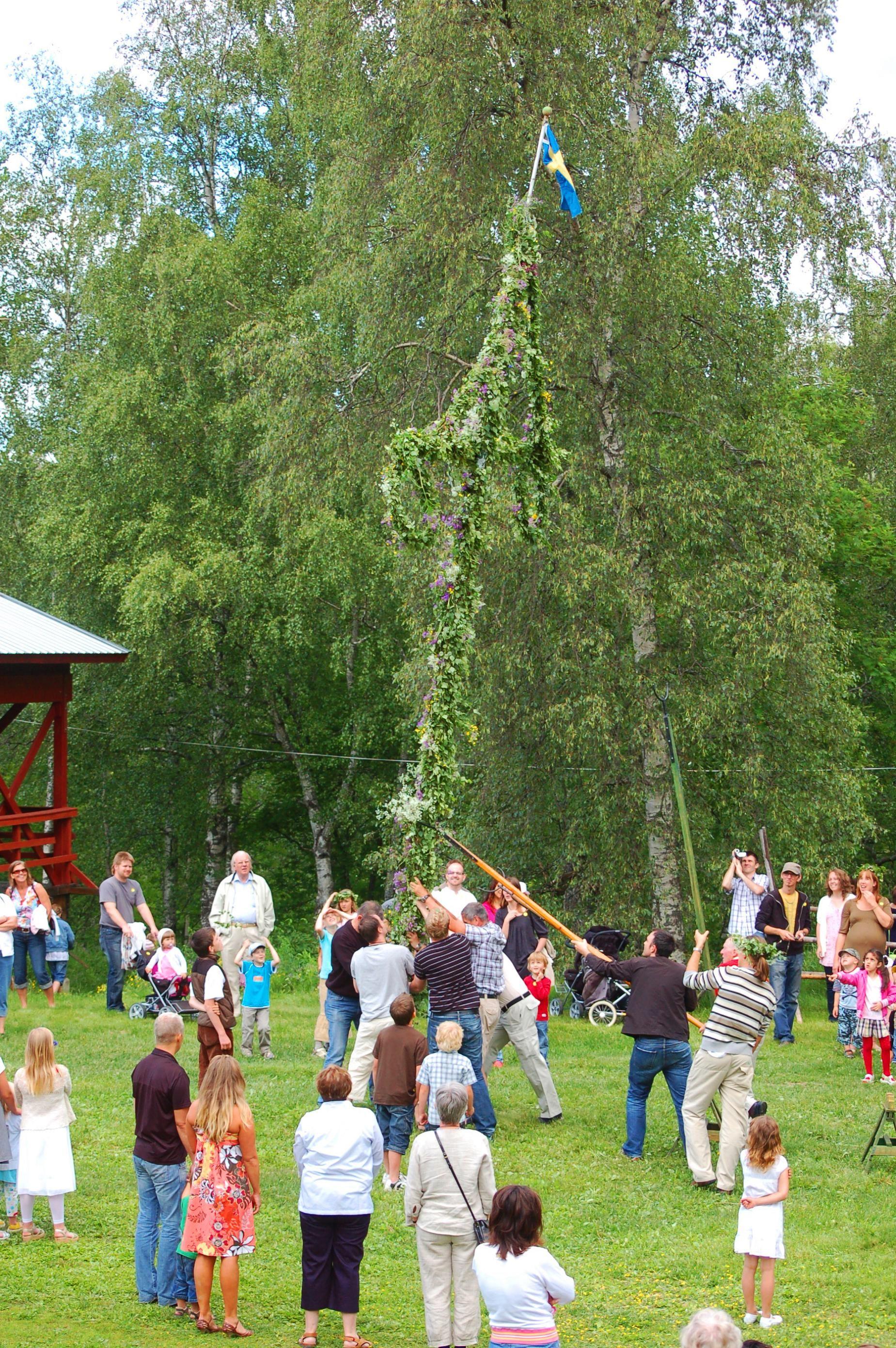 Foto: Media Lupus, Sollefteå Hembygdsgård, Ådalsbyn