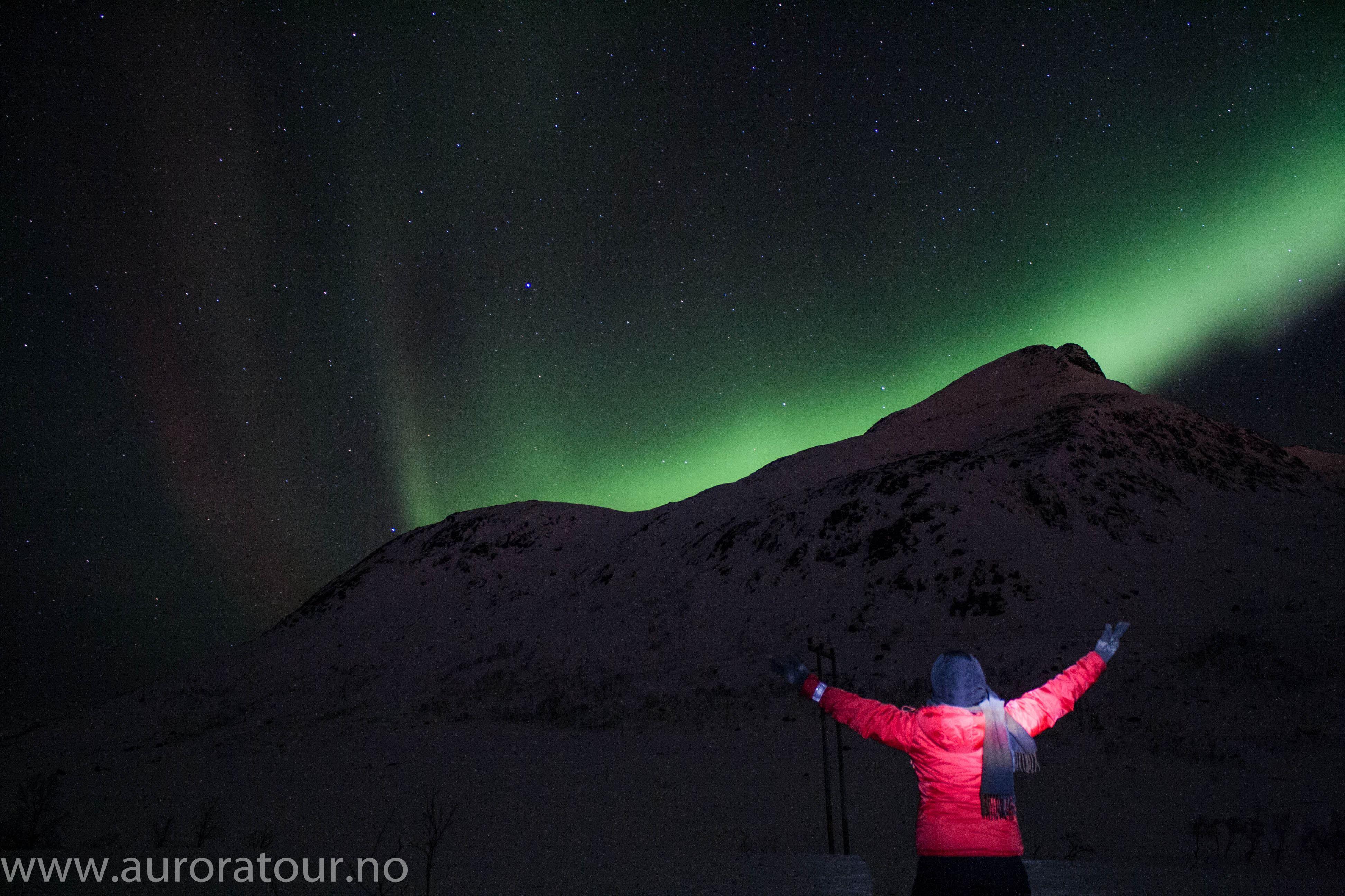 Aurora Tour – Din Nordlysguide i Tromsø