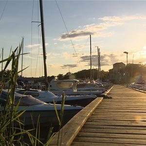 Gästhamnsbrygga med båtar