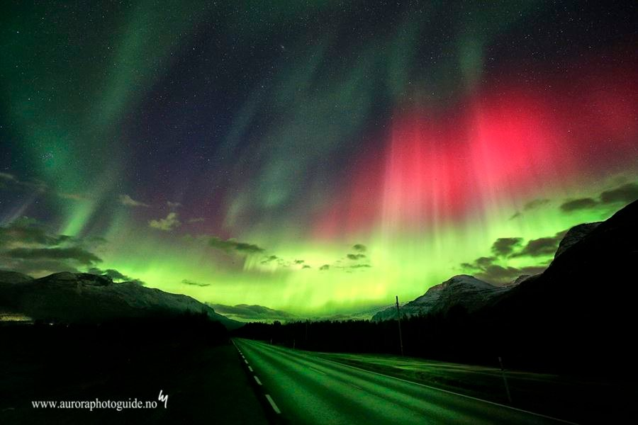 "Chasing ""The Green Lady"" - AuroraPhotoGuide"