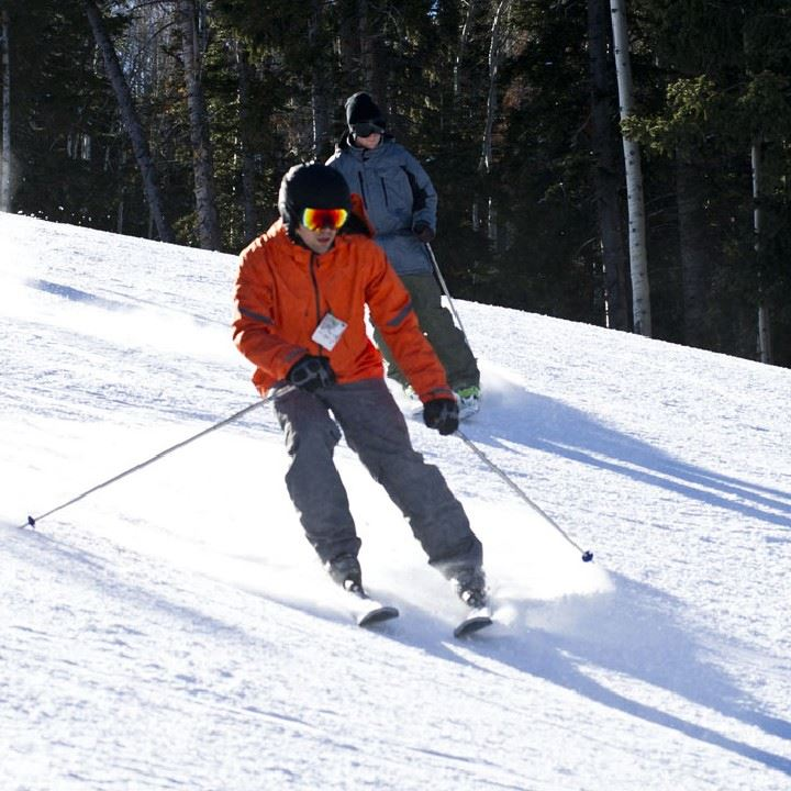Alpina Skidor -Medel
