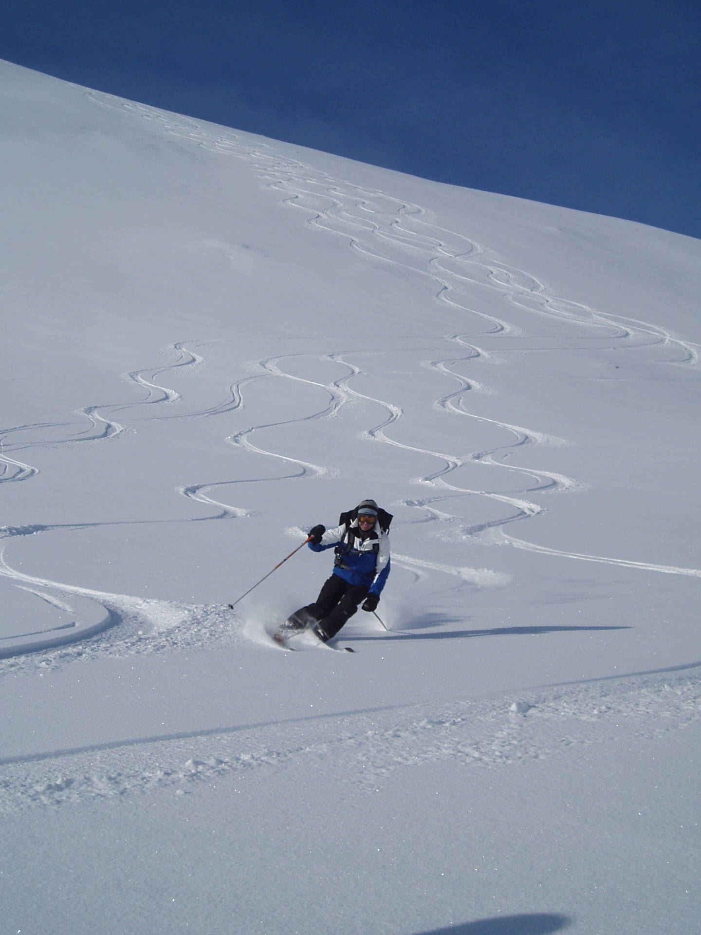 Alpine touring with guide