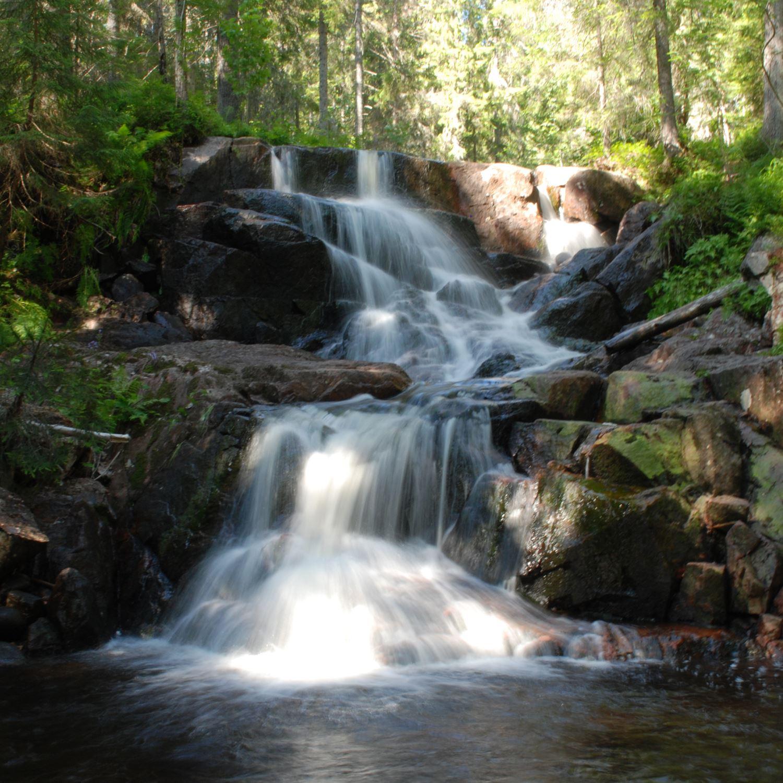 Foto: Carolina Hillerdal, The High Coast Trail