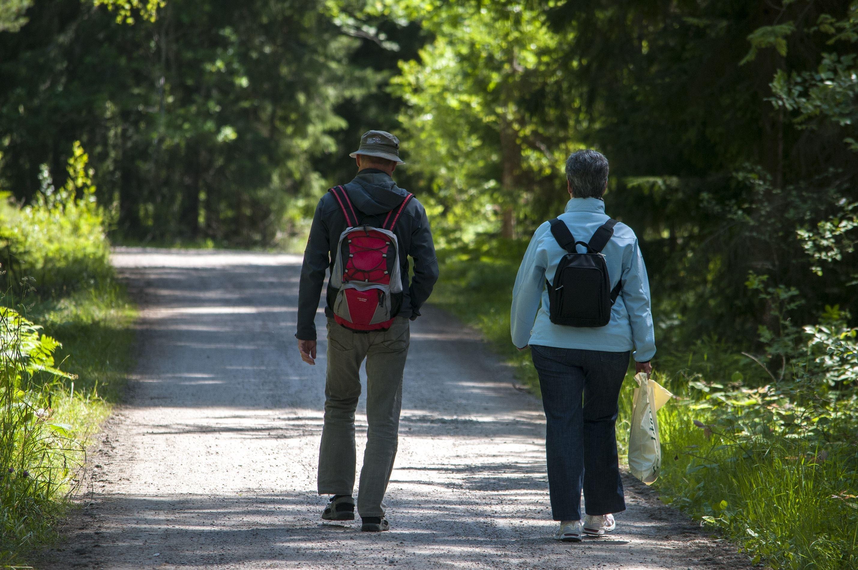 Hiking paths on Hasselö and Sladö