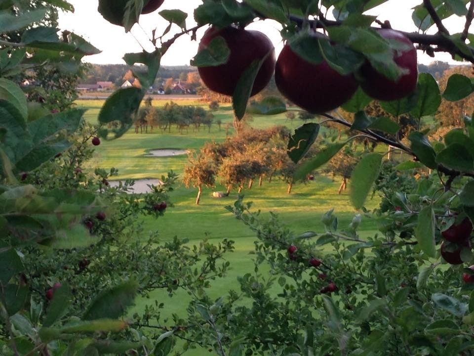 Äppelgårdens GK
