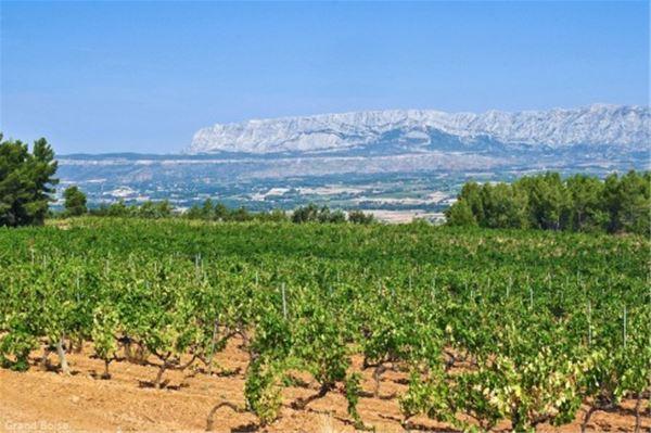 Full day wine tour around Aix en Provence