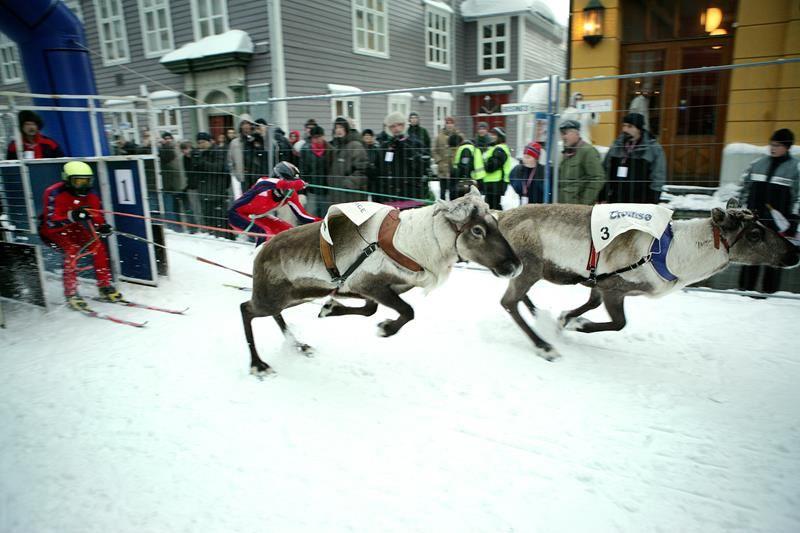 © MSM, Sami week with Norwegian Championship in reindeer racing and lasso throwing