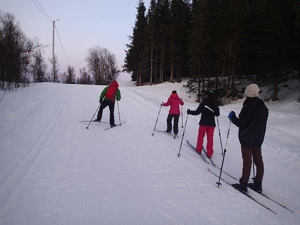 Rent Cross-Country Ski Package - Tromsø Outdoor