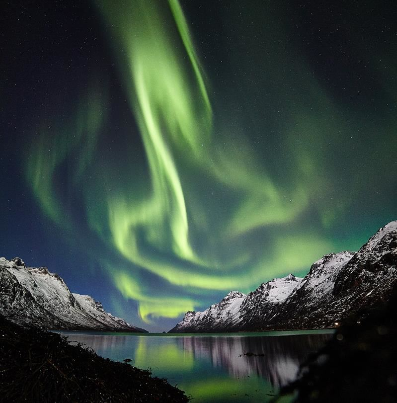 © Arctic Guide Service, Arctic Guide Service