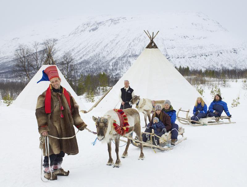 © Lyngsfjord Adventure - Reinkjøring, Reindeer Sledding - Lyngsfjord Adventure