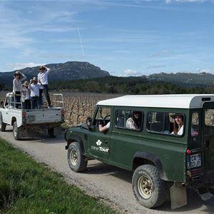 Balade en 4x4 dans les vignes en Pic Saint-Loup, Domaine Haut-Lirou