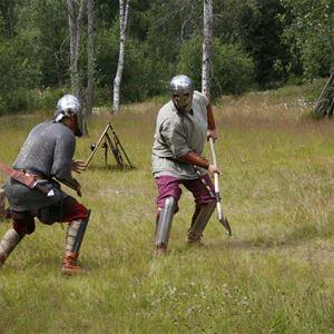 Guidningar på Årsunda Vikingagård