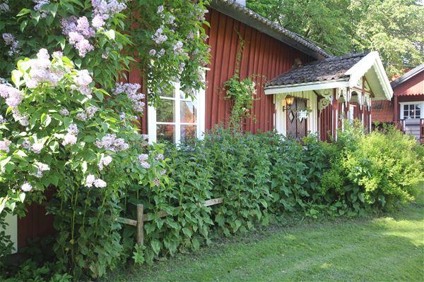 The farm of Liden