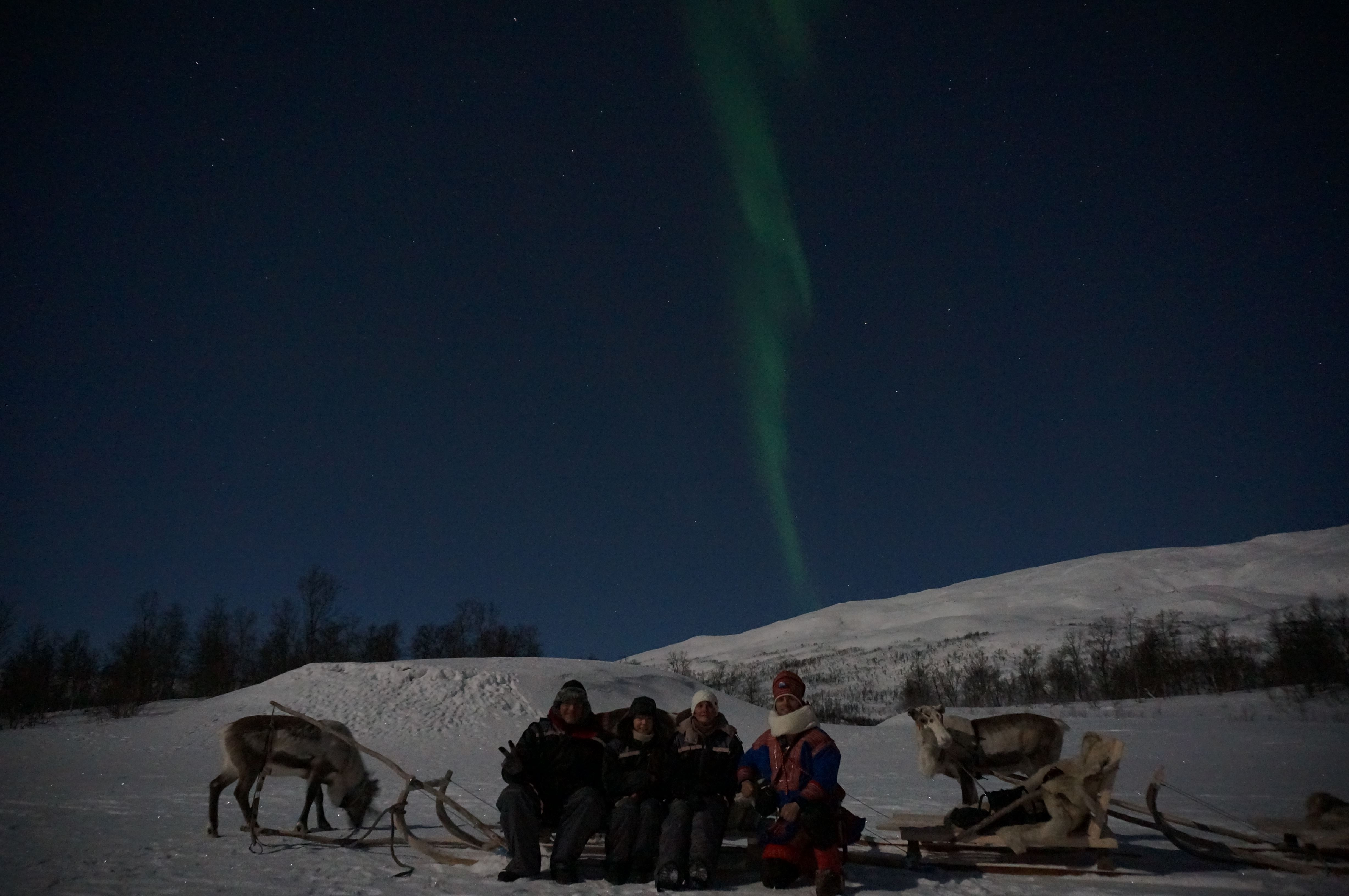 Reindeer Sledding and Northern Lights – Tromsø Lapland