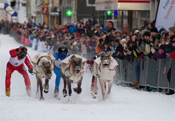 © Truls Tiller, Sami week with Norwegian Championship in reindeer racing and lasso throwing