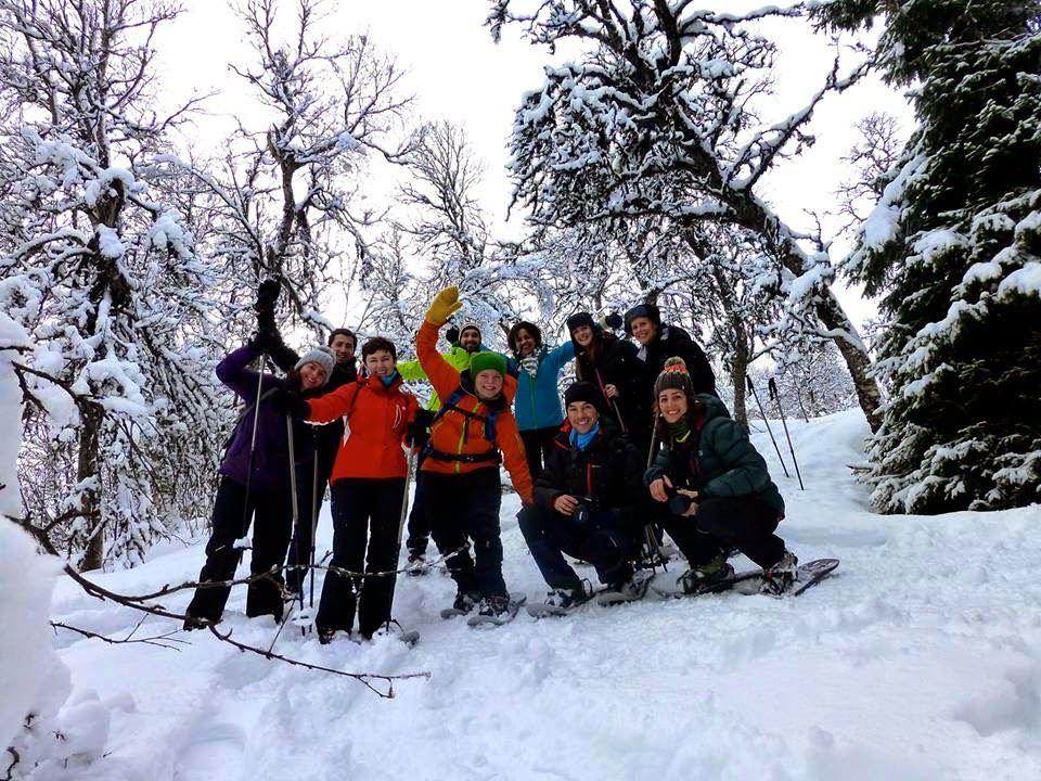 Guided Snowshoe Trip on Tromsøya – Tromsø Outdoor