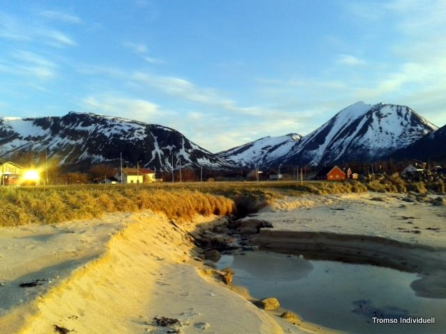 Midnight Sun Tour and Walk - 4,5h - Tromsø Individuell