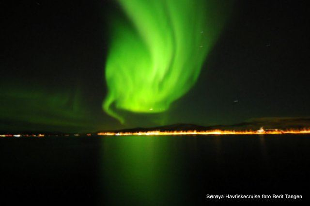 Northern Light cruise at Midnight – Sørøya Havfiskecruise