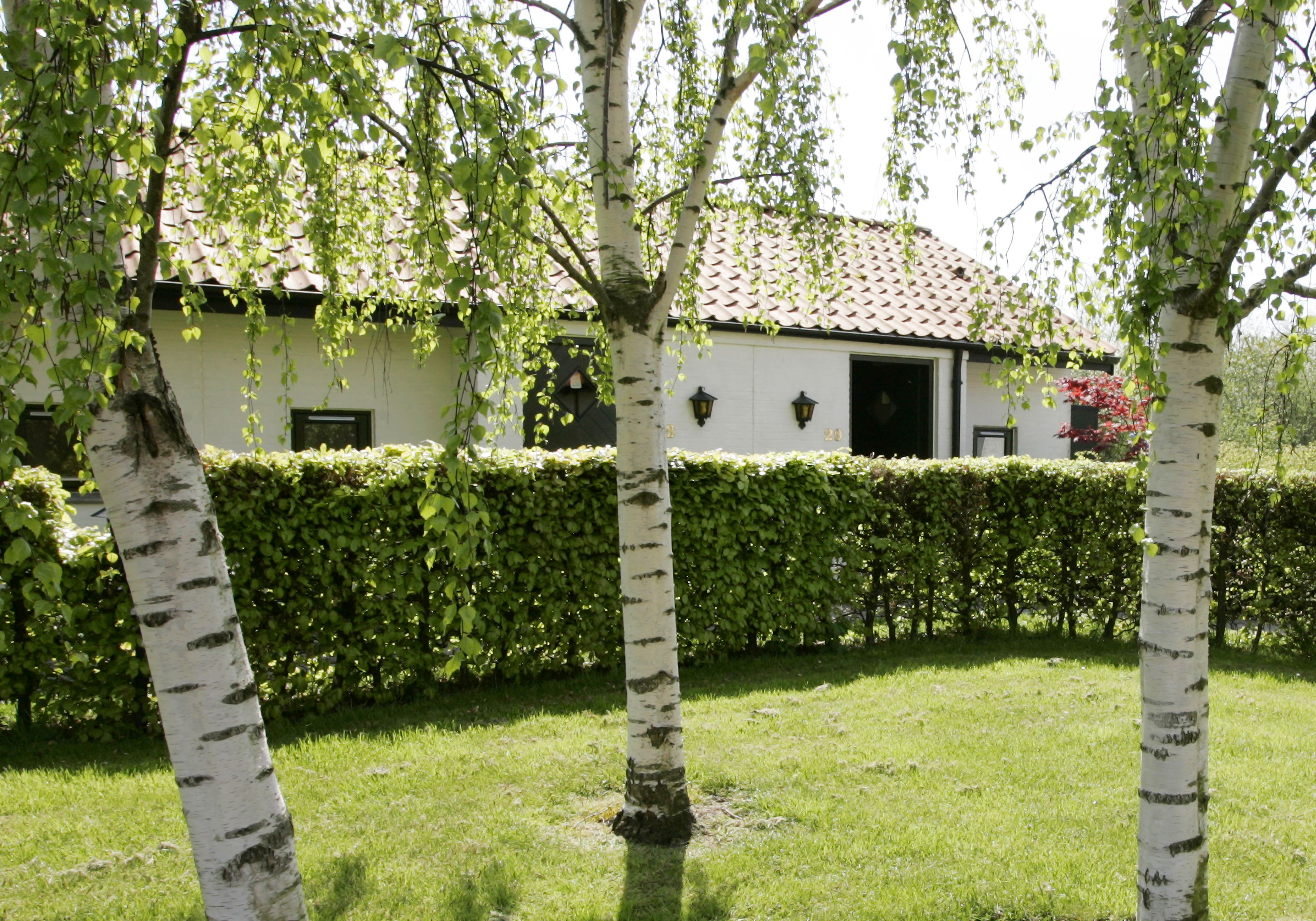 Hotel The Cottage