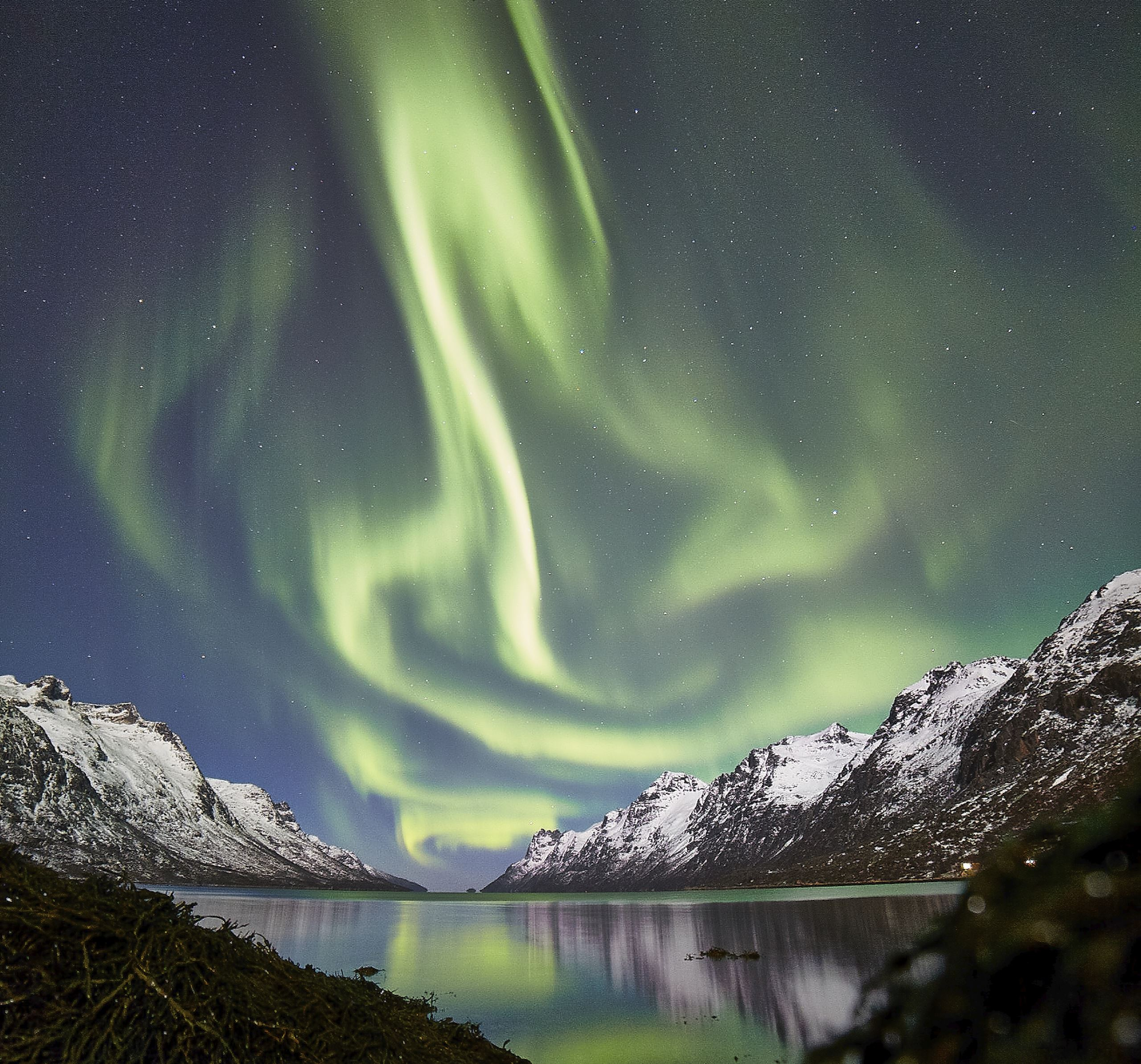 Non-Stop Northern Lights Chase - Arctic Guide Service