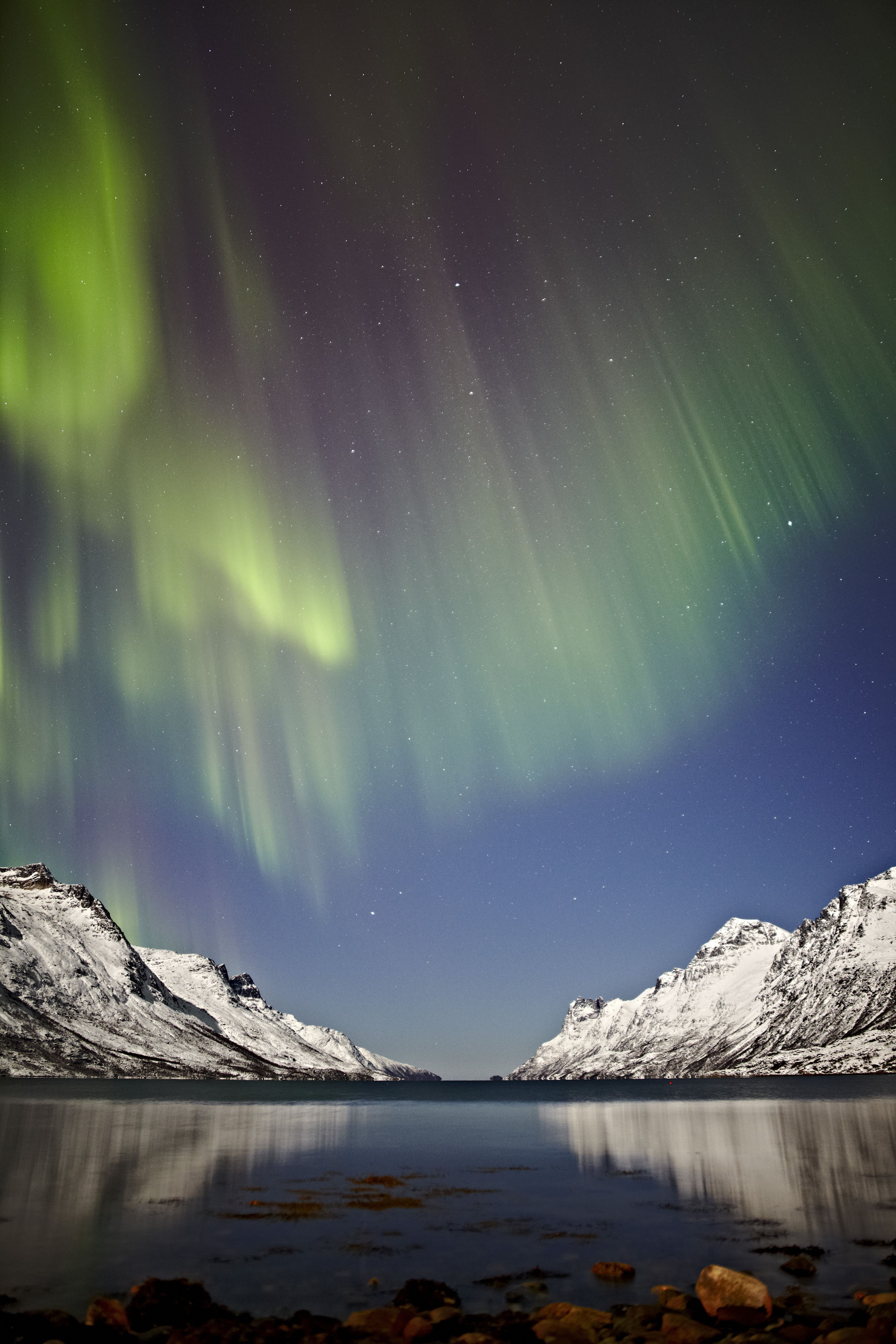 Private Northern Lights Chase - Arctic Guide Service