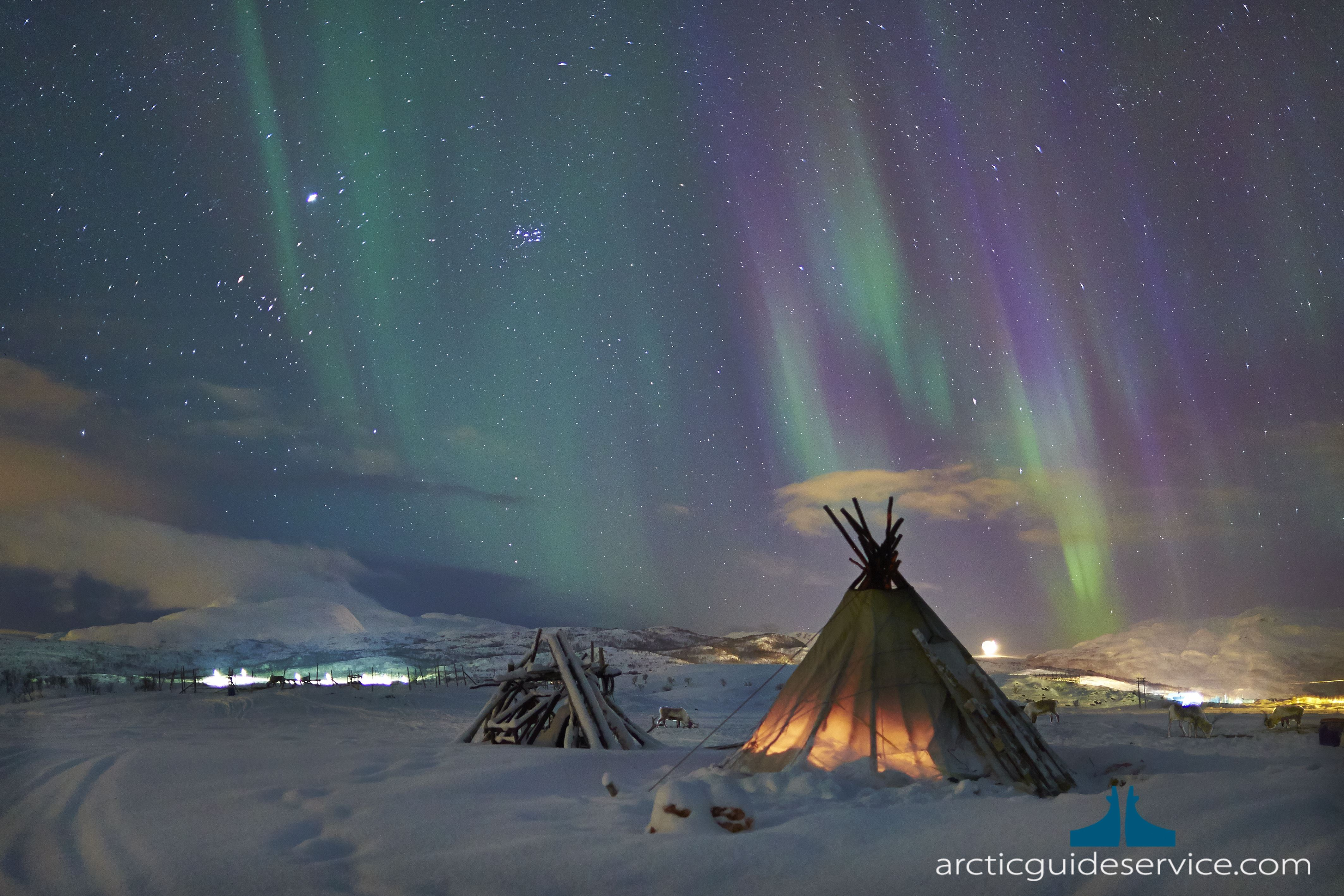 VIP Northern Lights Chase – Arctic Guide Service