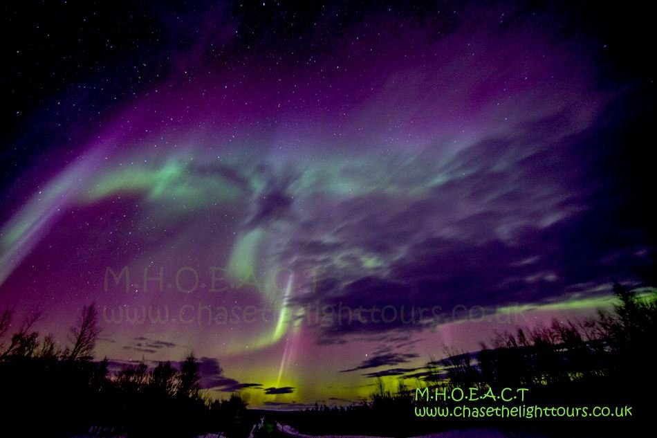 A Passionate Aurora Borealis Hunt - Marianne's Heaven on Earth Aurora Chaser Tours
