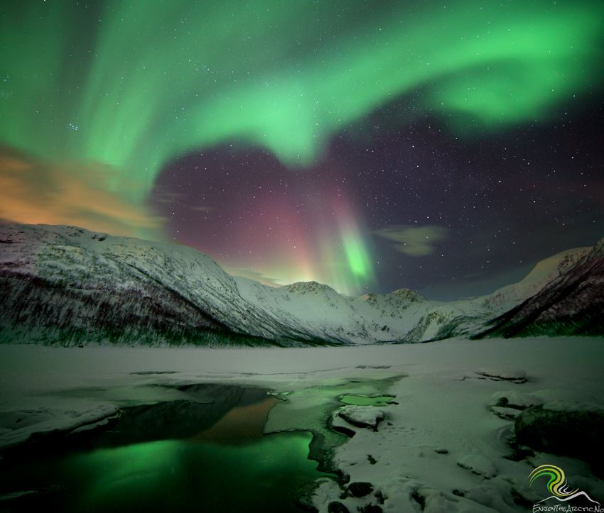 Nordlys og fototur – Enjoy the Arctic